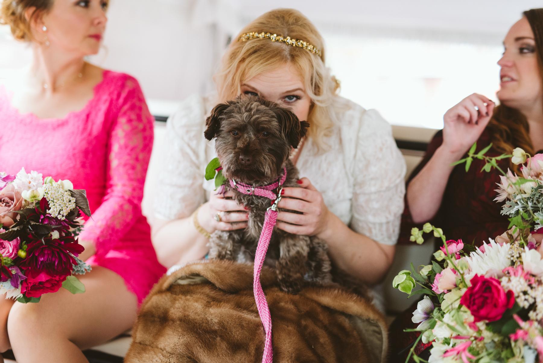 Best creative Wedding Photographer Babb