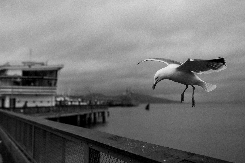 USA ROADTRIP TRAVEL PHOTOGRAPHY-178