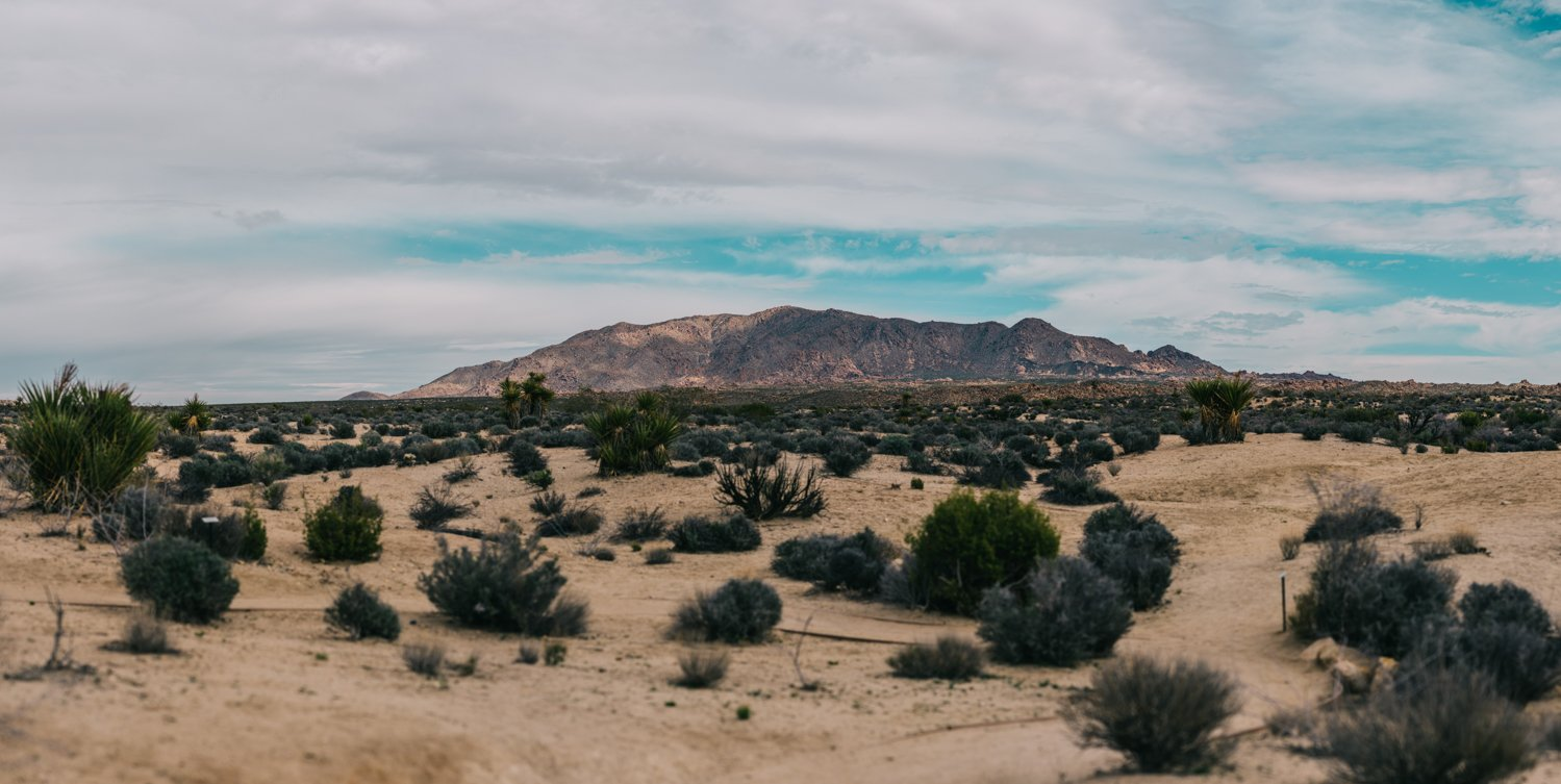 USA ROADTRIP TRAVEL PHOTOGRAPHY-229