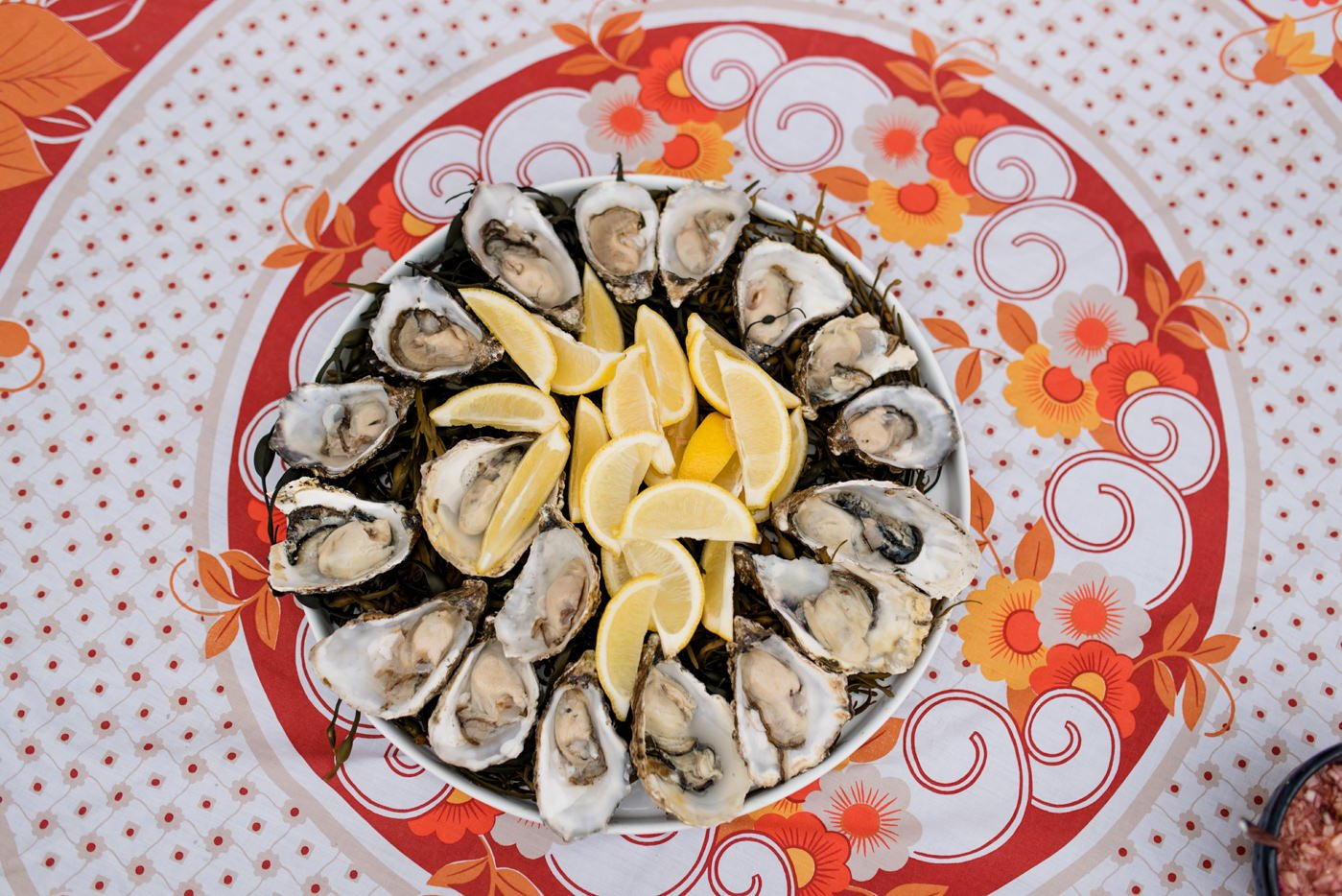 Oysters with colourful wedding decor Westcove House Co Kerry Ireland wedding