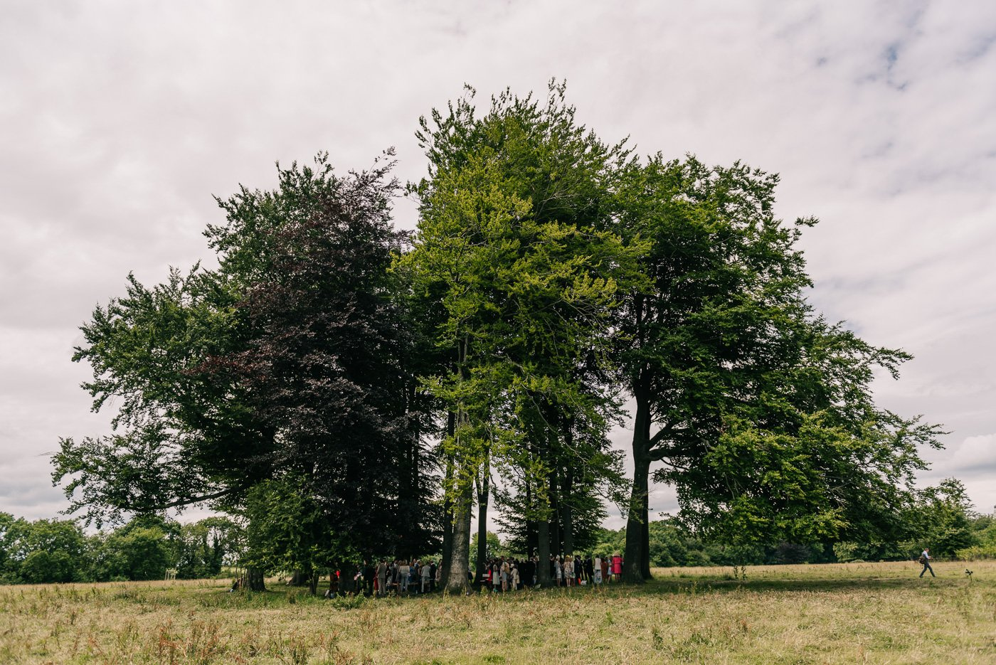 outdoor ceremony in copse of trees cotswolds humanist wedding