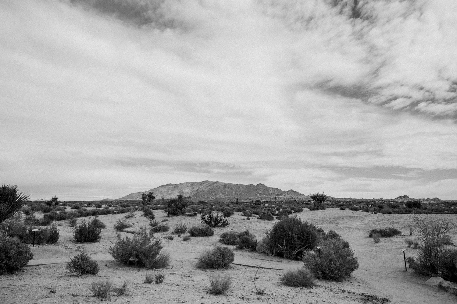 USA ROADTRIP TRAVEL PHOTOGRAPHY-228