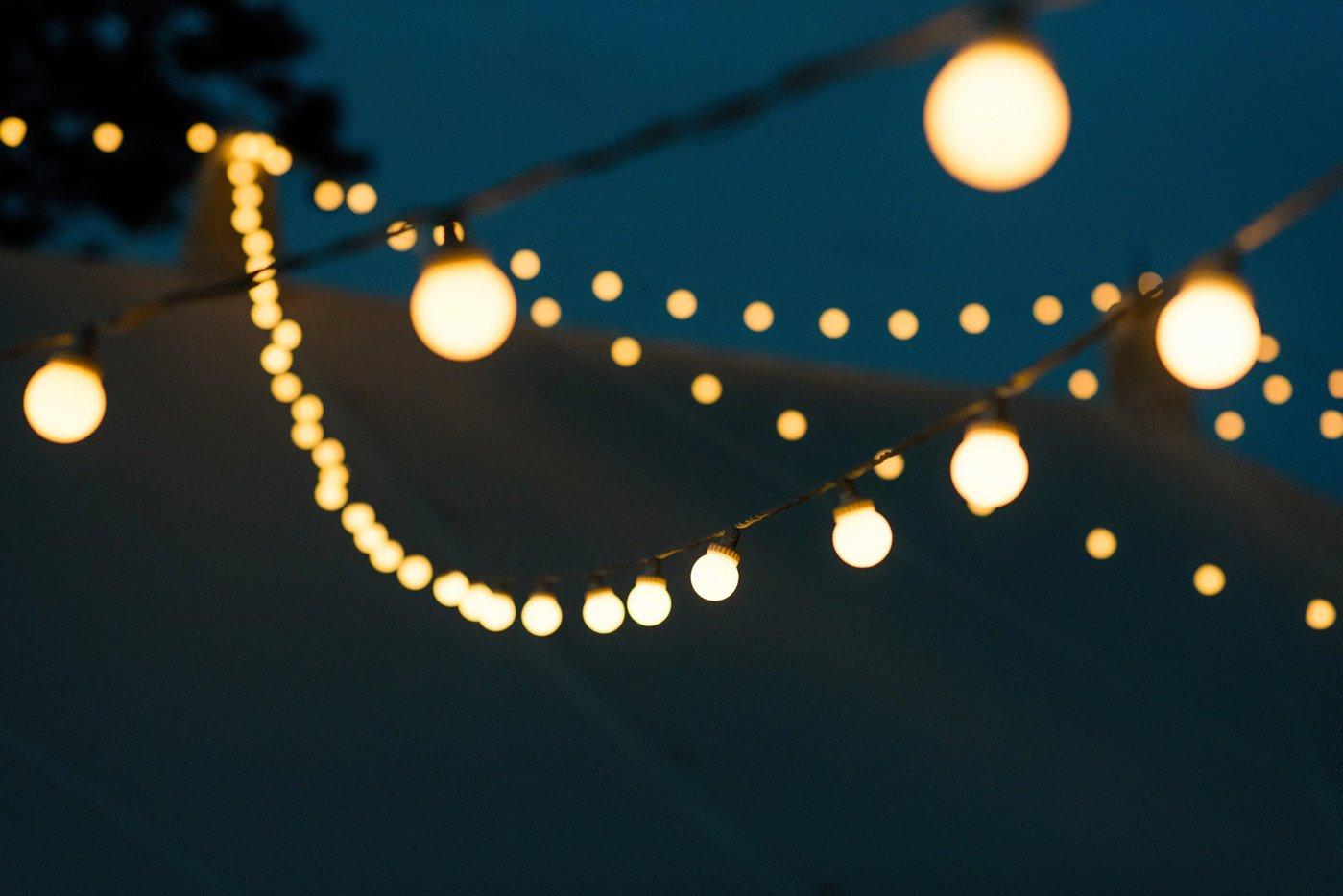 bignor-park-wedding-photography-robyn-and-tom-111