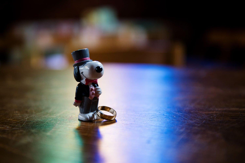 snoopy-themed-wedding-bush-hall-london-photographer-22
