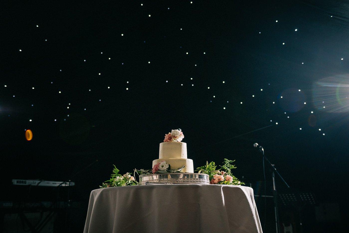 Sprivers Mansion Wedding wedding cake