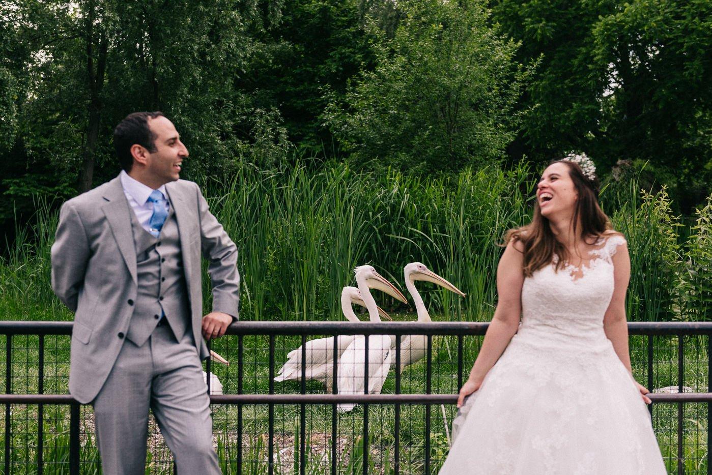 animal wedding pictures london zoo wedding photographer